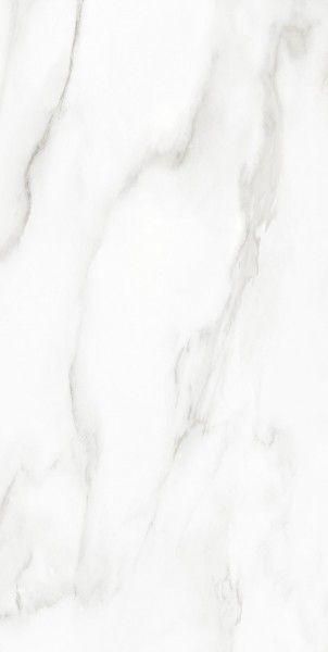 - 600 × 1200 مم (24 × 48 بوصة) - STATUARIO BIANCO[1]