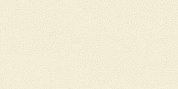 - 300 × 600 مم (12 × 24 بوصة) - 71-Rustic-Ivory