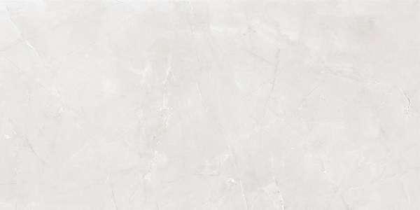 - 600 × 1200 مم (24 × 48 بوصة) - armani-light-grey-1